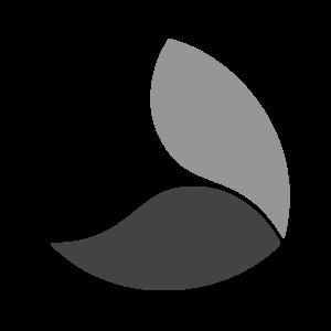 Daxio Design - Best Logo Design Agency - Vancouver, Burnaby, New Westminster, Coquitlam, Surrey, Richmond, Canada, USA